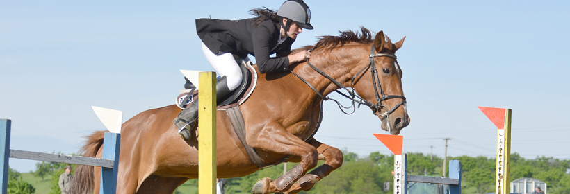 Bramham Horse Trials Showjumping